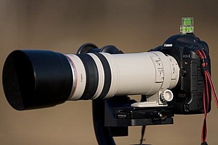 Canon EF 100 400mm 4.5-5.6 L IS