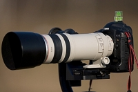 Canon EF 100-400mm 4.5-5.6 L IS