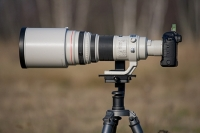 Canon EF 600mm f4 L IS USM