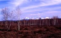 panorama z górami
