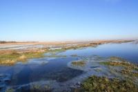 Panorama rezerwatu Beka